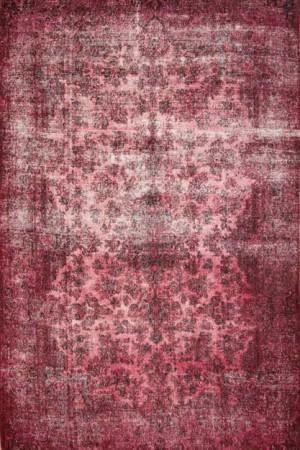 20111208_960481-5.9x8